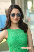 Tamannah Indian Actress New Pic 2492