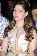 Tamannah Indian Actress Nov 2015 Galleries 2444