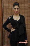 Tamannah South Actress Latest Photo 7522