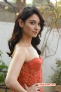 Tamannah South Actress Pic 1311