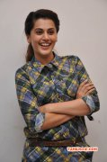 Galleries Indian Actress Tapsee 388