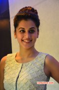 Recent Images Tapsee Tamil Heroine 5384