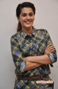 Recent Stills Tapsee South Actress 8294