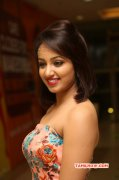Indian Actress Tejaswi Madivada New Gallery 4598