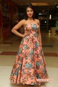 Indian Actress Tejaswi Madivada Recent Wallpapers 9132