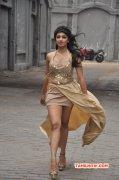 Tejaswi Madivada Indian Actress New Pics 1233