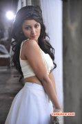 Tejaswi Madivada Tamil Actress Latest Galleries 3857