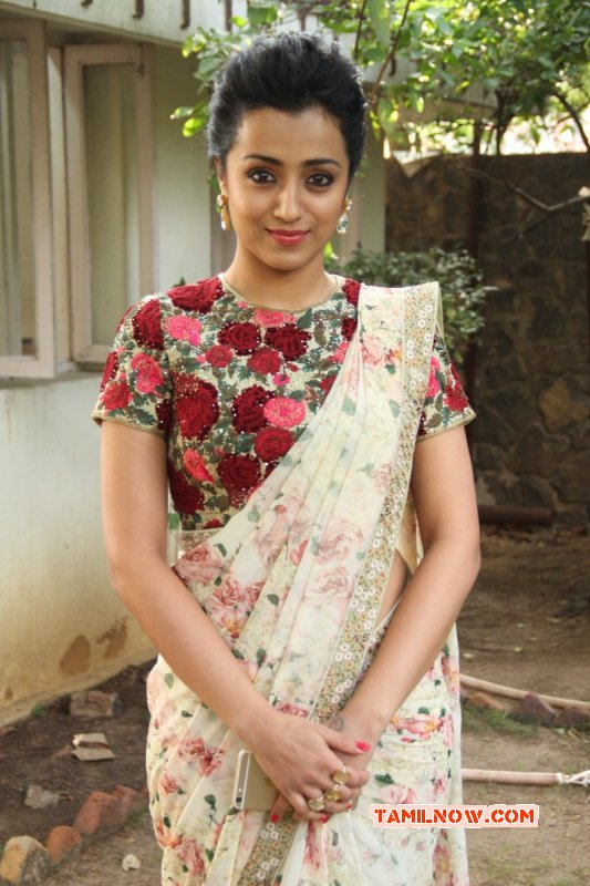 2015 Albums Film Actress Trisha Krishnan 7254