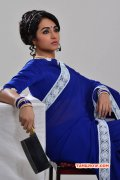 2015 Galleries Trisha Krishnan Indian Actress 7269