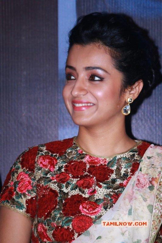 2015 Image Trisha Krishnan Film Actress 4772