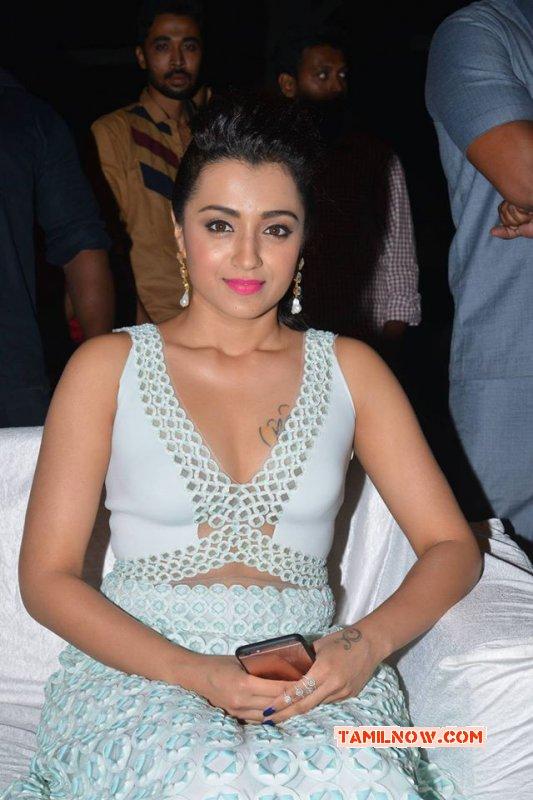 2017 Pic Trisha Krishnan Movie Actress 7303