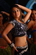2020 Image Trisha Krishnan Indian Actress 632
