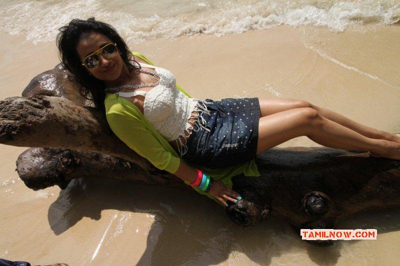 Actress Still Trisha Hot 117