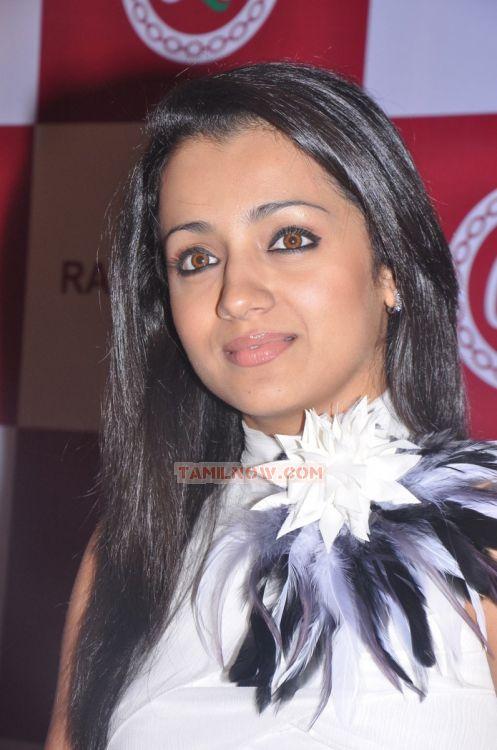 Actress Trisha Krishnan 3130