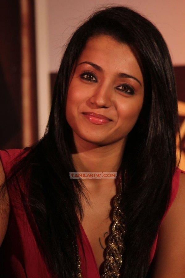 Actress Trisha Krishnan 409