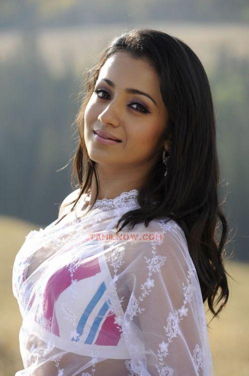 Actress Trisha Krishnan 5643