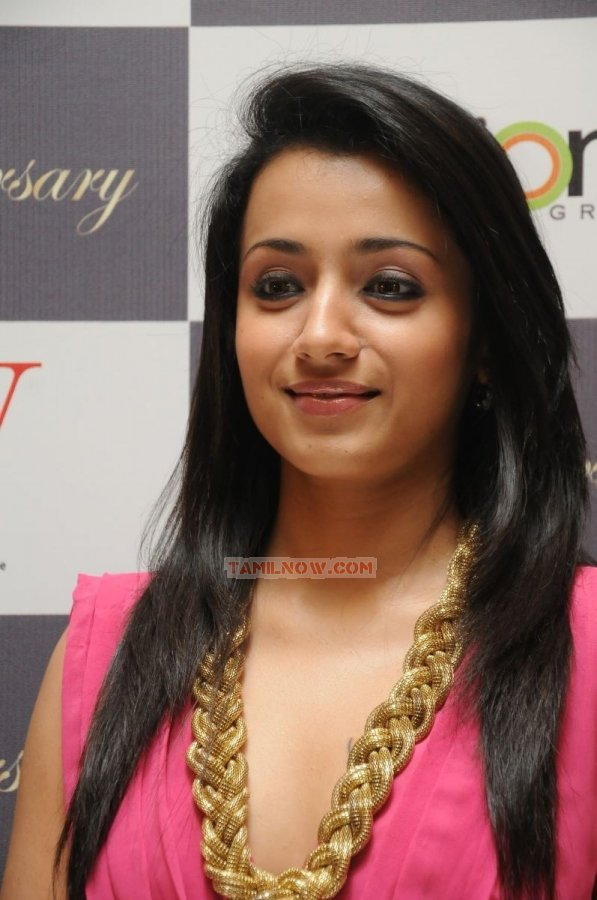 Actress Trisha Krishnan 6071