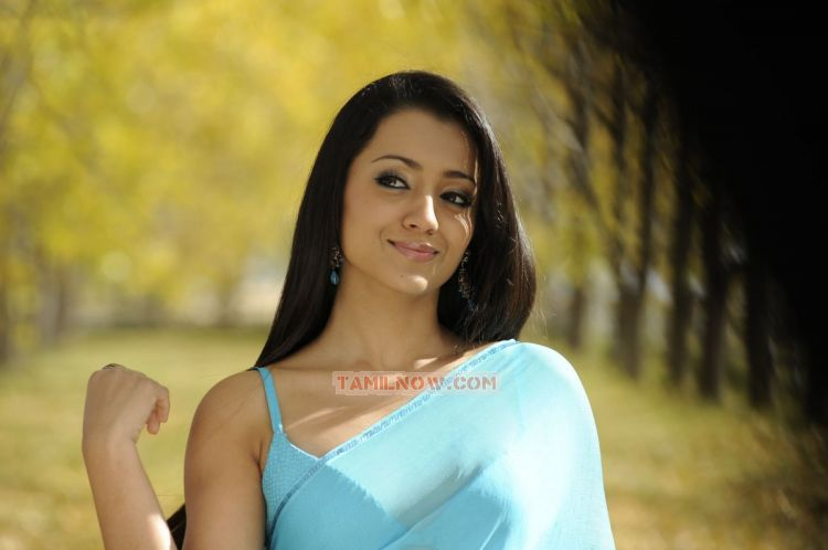 Actress Trisha Krishnan 8424