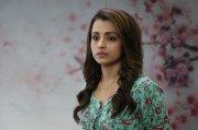 Actress Trisha Krishnan Images 7451