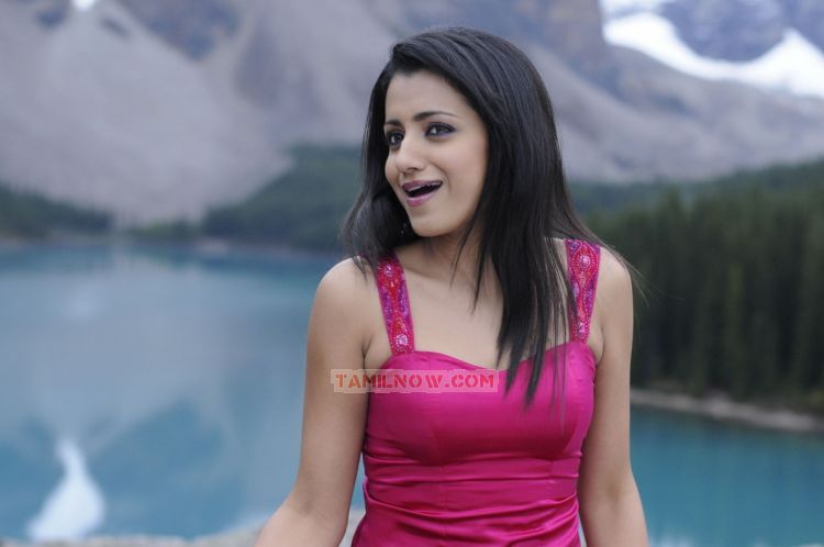 Actress Trisha Krishnan Photos 5474