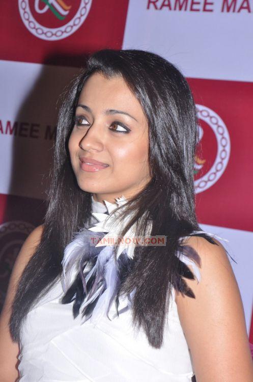 Actress Trisha Krishnan Photos 5518