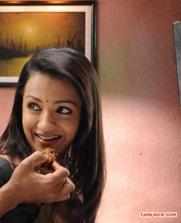 Actress Trisha Krishnan Stills 7687