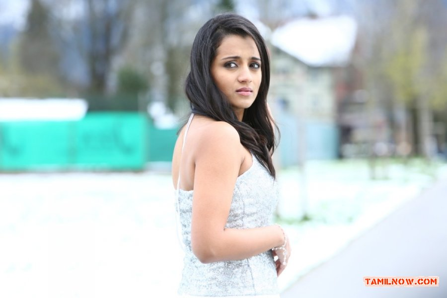 Actress Trisha Krishnan Stills 9528