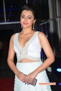 Album Actress Trisha Krishnan 2953