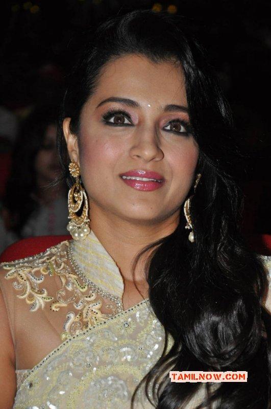 Apr 2015 Photo Trisha Krishnan Film Actress 2856
