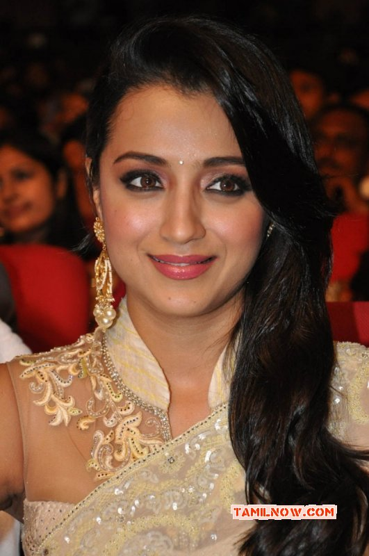 Cinema Actress Trisha Krishnan 2015 Wallpapers 6202