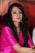 Heroine Trisha Krishnan New Images 6562