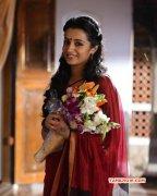 Indian Actress Trisha Krishnan May 2015 Wallpapers 6342