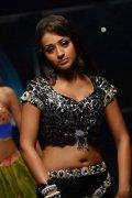 Indian Actress Trisha Krishnan New Wallpapers 4232