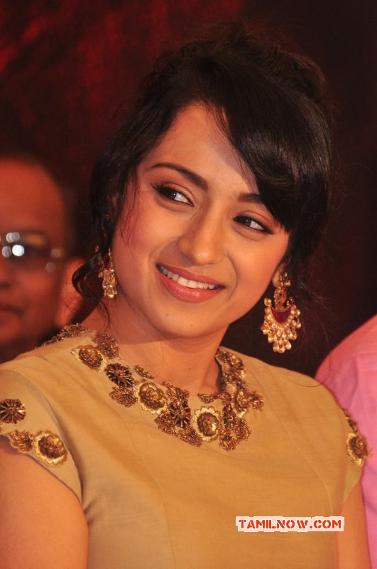 Latest Gallery Movie Actress Trisha Krishnan 5988