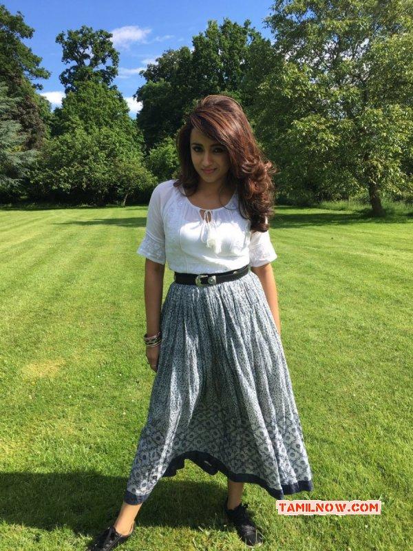 Latest Pics Trisha Krishnan Cinema Actress 4378