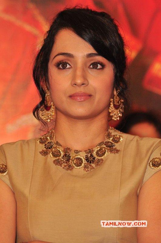 Latest Still Trisha Krishnan Tamil Movie Actress 7053