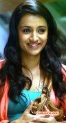 Movie Actress Trisha Krishnan Wallpapers 8489
