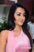 New Album Movie Actress Trisha Krishnan 6801