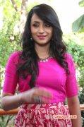 New Album Tamil Actress Trisha Krishnan 6887