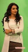 New Album Trisha Krishnan Tamil Movie Actress 334