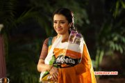 New Albums Film Actress Trisha Krishnan 1710