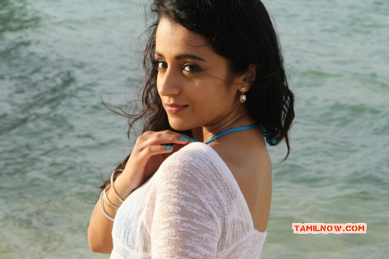 New Photo Trisha Hot 724