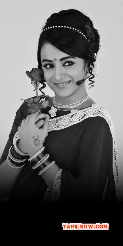 New Photos Trisha Krishnan Tamil Heroine 4704