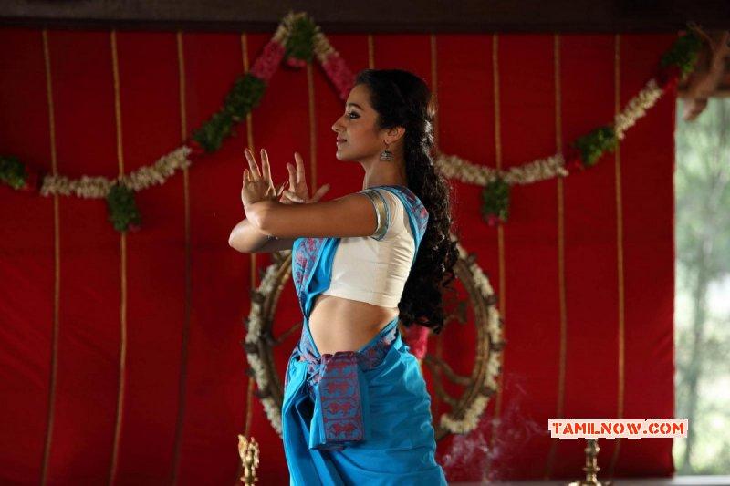 New Picture Actress Trisha Krishnan 2881