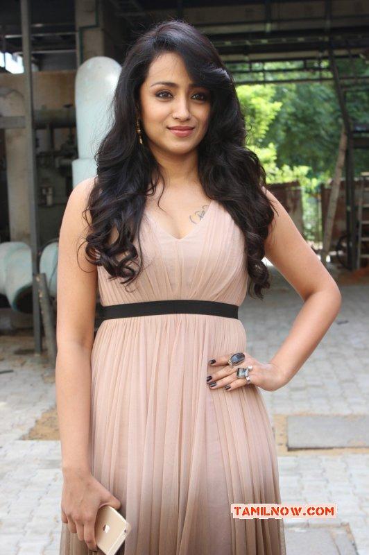 New Stills Actress Trisha Krishnan 7716