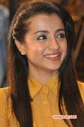 New Wallpaper Trisha Krishnan Film Actress 1678