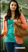 Nov 2014 Picture Trisha Krishnan Indian Actress 7564