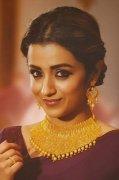 Pic Trisha Krishnan Indian Actress 9436