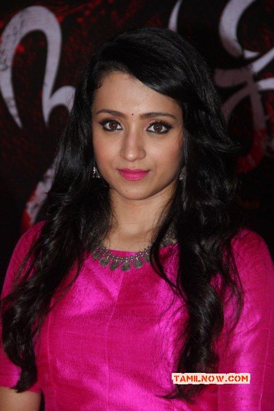Recent Album Trisha Krishnan Cinema Actress 1986