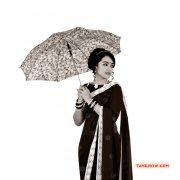 Recent Image Trisha Krishnan Heroine 319